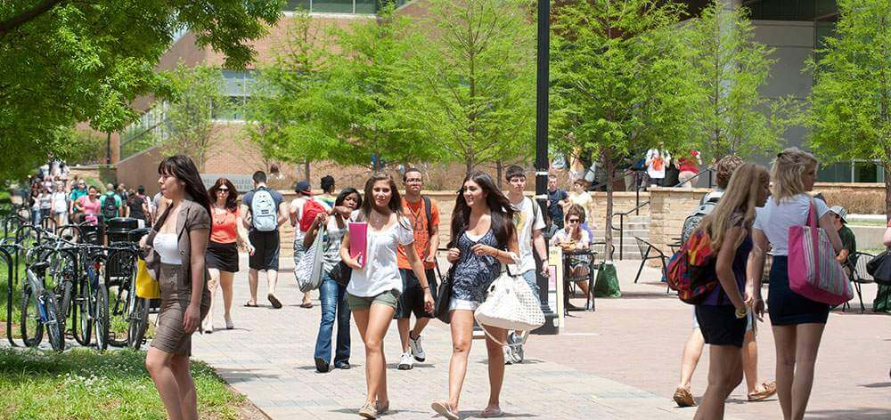Transfer Students Are Facing Problems On Campus