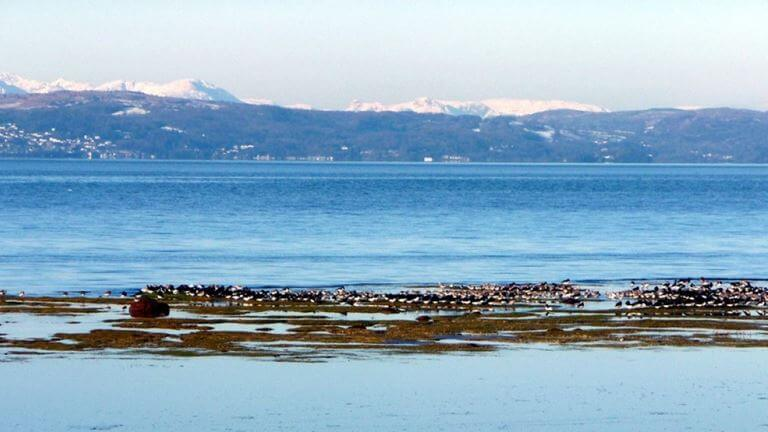 Morecambe Bay, Lancashire, UK