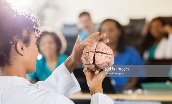 Prof holding human Brain